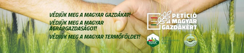 gazda_2
